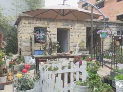 农村老屋翻新改造图片 荒废10年的农村老屋