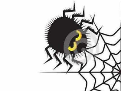 蜘蛛,风水 家里出现蜘蛛预示什么