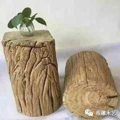 树根的作用 学会树根的三大处理方法