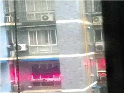 多肉补光灯有用吗 美女家每天亮粉色灯光吓坏邻居
