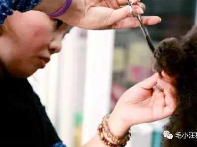 美容师好辛苦手痛 一个经验丰富的美容师的亲身经历