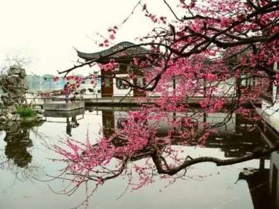 易经文化句子 读懂中国文化的大道之源